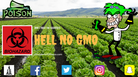 GMO, Yes or No?